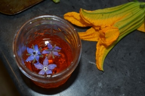 Cocktail and Squash Blossoms / Meg Hannan Photo